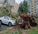 В Туле последствия непогоды будут устранять круглосуточно