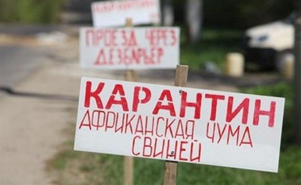 """В """"Лазаревском"""" подтверждена африканская чума свиней"""