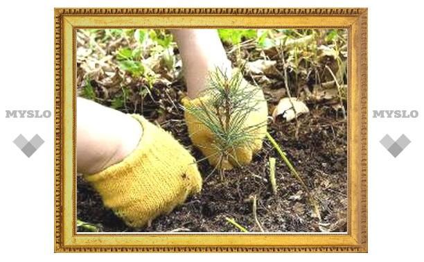 Туляки посадят семена вместе с министром