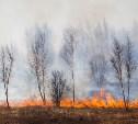 В Тульской области сохраняется высокая пожароопасность