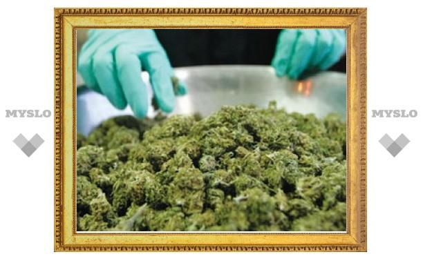 Тульские наркополицейские остановили автомобиль с 3,3 кг марихуаны