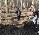 В Новомосковске прошел первый городской субботник