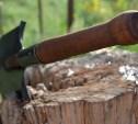 Житель Ясногорска убил приятеля лопатой