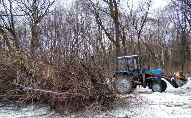 Рогожинский парк передали в управление ГУ ТО «Тульские парки»
