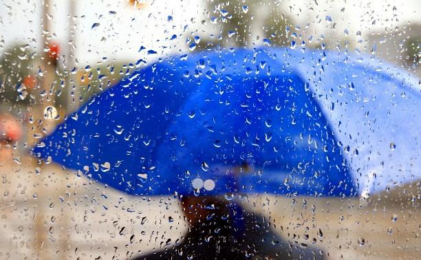 В Тульскую область вернутся дожди