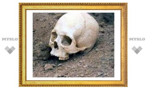 Индийская полиция прикрыла контрабандную торговлю черепами