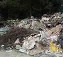 Киреевская прокуратура обязала коммунальщиков убрать несанкционированную свалку
