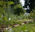 В Тульской области восстанавливают огород XVIII века Болотова