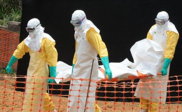 В аэропортах России начали проверять на вирус лихорадки Эбола