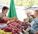 Тульские рынки «уйдут под крышу» в 2020 году