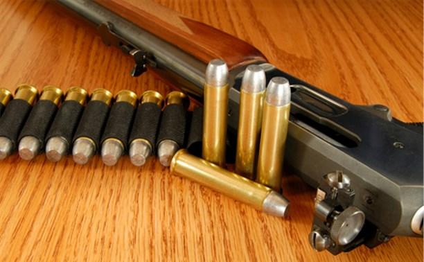 Житель Киреевского района застрелил старшего брата из мелкокалиберного ружья