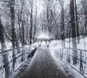 Седая зима в Платоновском парке