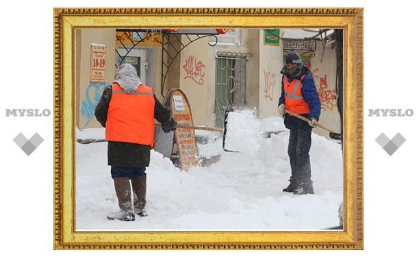 Управляющие компании Тулы отчитались о расчистке 1208 дворов