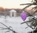«Петровский квартал» объявляет конкурс с денежными призами