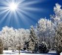В начале следующей недели на Европейской части России заметно похолодает