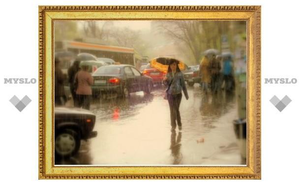 Тулу ждут дождливые выходные