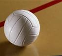 Волейболистки «Новомосковочки» сыграют на Брянщине