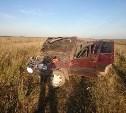 Под Алексином в ДТП с пьяным водителем пострадали два ребёнка
