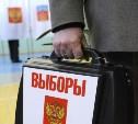 Центральный избирком завершил прием документов от самовыдвиженцев на пост Президента РФ