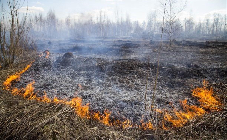 В Тульской области объявлен желтый уровень опасности