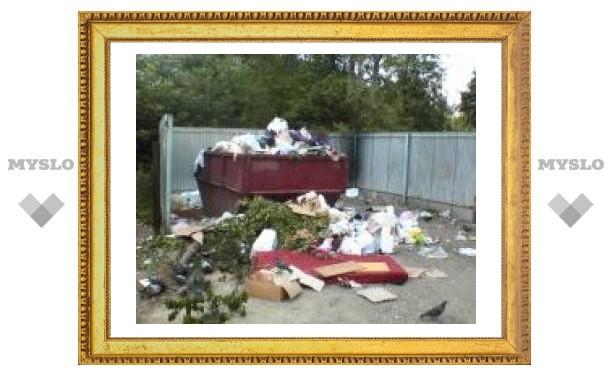 Тула утопает в мусоре