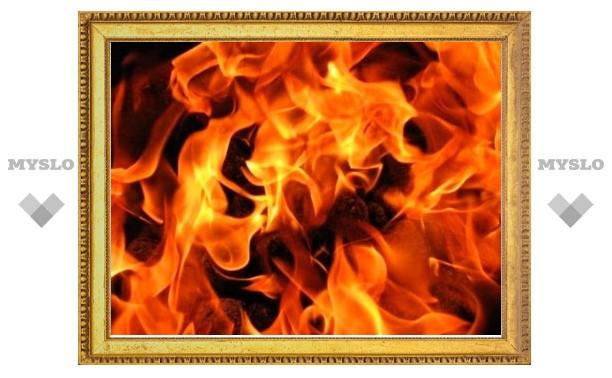 В Тульской области едва не сгорел дачный дом