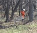 В Туле начали обрабатывать территорию от клещей