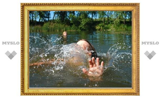 В Туле на пруду утонул ребенок
