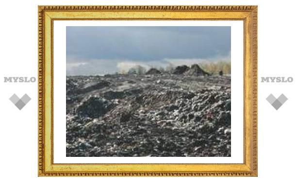 Кому достанутся тульские отходы?