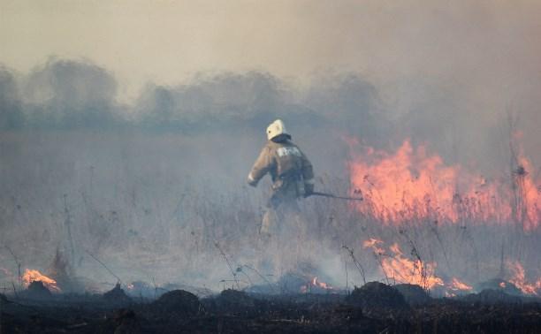 В Тульской области начали поджигать траву