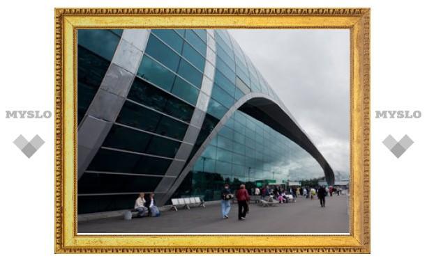 """Аэропорт """"Домодедово"""" доказал в суде право досматривать не всех пассажиров"""