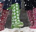 Погода в Туле 7 ноября: туман, гололедица и мокрый снег с дождём