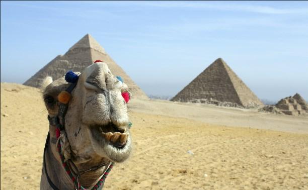 В Египте могут отменить визовый сбор для россиян до конца лета