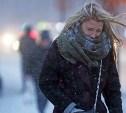 Метеопредупреждение: в Туле усилится ветер