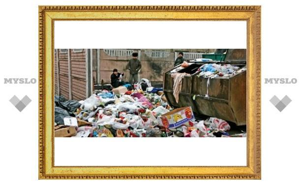 В Туле некуда выбрасывать мусор