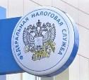 В налоговых инспекциях Тульской области приём ведется только по онлайн-записи