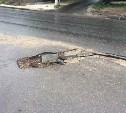 Тулячка пожаловалась на «благоустройство» улицы Л. Толстого