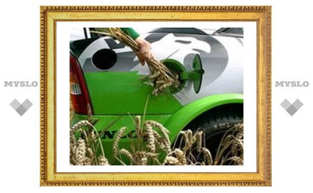 Биотопливо стало причиной продовольственного кризиса
