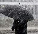 Погода в Туле 16 января: облачно, мокрый снег и ветер