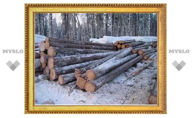 Россия отменит пошлины на лес ради вступления в ВТО