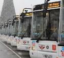 В Туле ГИБДД будет всю неделю проверять водителей автобусов