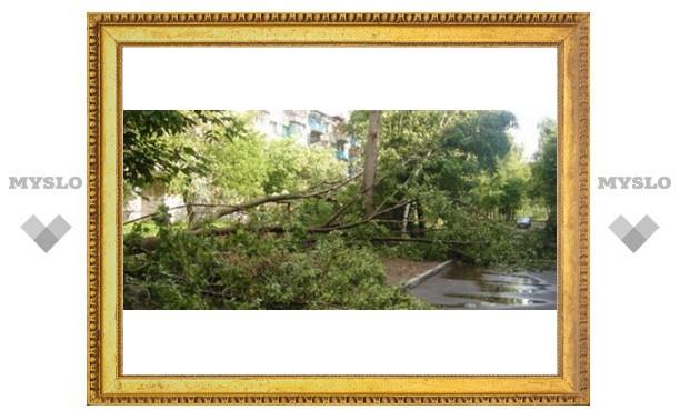 На Тулу идет ураган