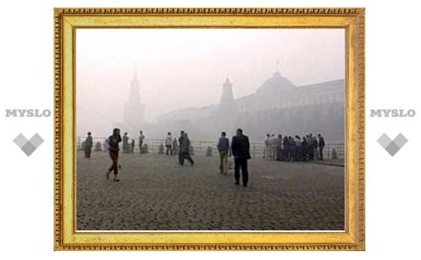 Мэрия Москвы оплатит оздоровление пострадавших от смога детей