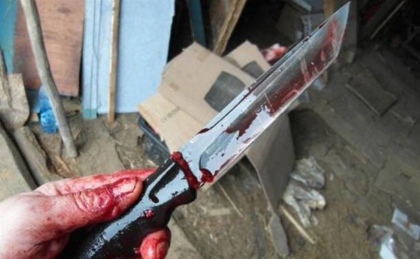 В Щекинском районе мать напала с ножом на родную дочь