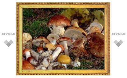 Тульские заводы будут выращивать грибы