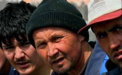 На заводе в поселке Товарковский жили и работали 9 нелегальных мигрантов