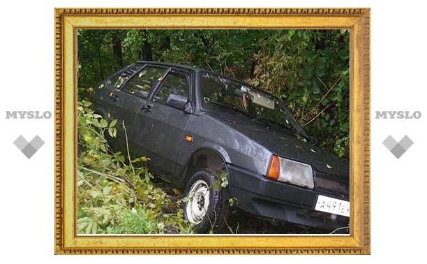 В Скуратове водитель «девятки» повис на деревьях