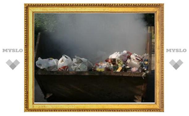 В Туле не хватает мусорных контейнеров