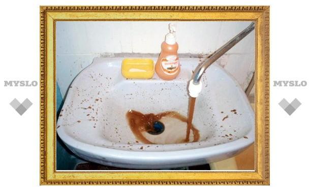 Когда вода в домах туляков станет чистой?