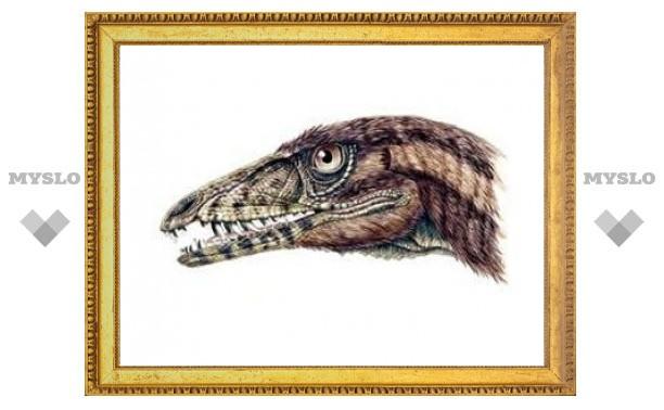 Палеонтологи обнаружили одного из самых первых динозавров